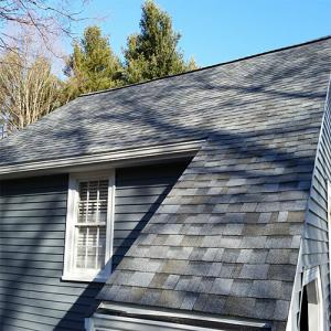 Flemming roof and sidding